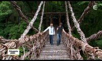 Bridge of lianas